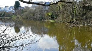 Un étang pour se ressourcer<br>