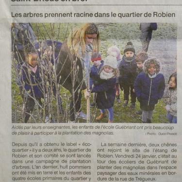 Les plantations de l''école Guébriant avec le C.A.R.