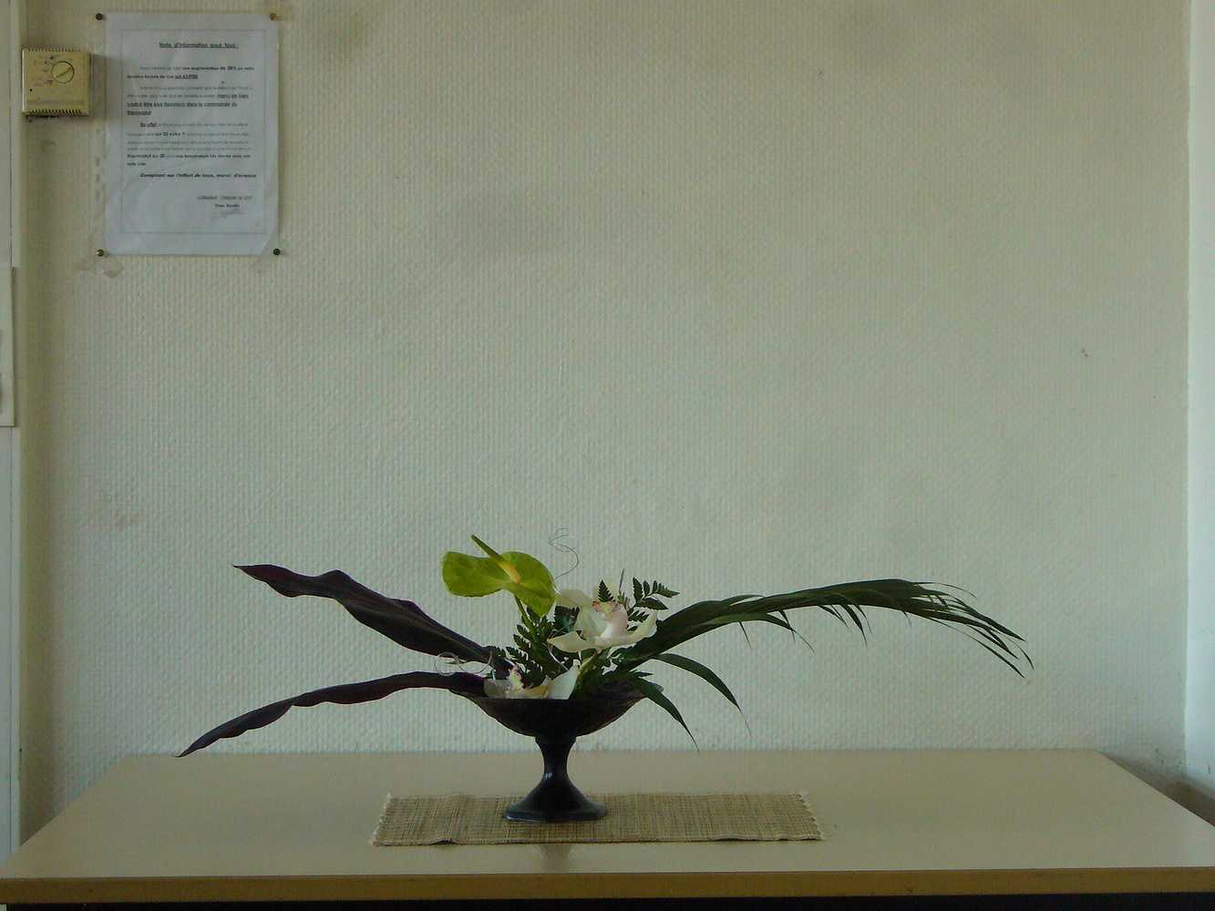 C''est la rentrée ! A vos sécateurs pour votre premier bouquet ikébana ! 0