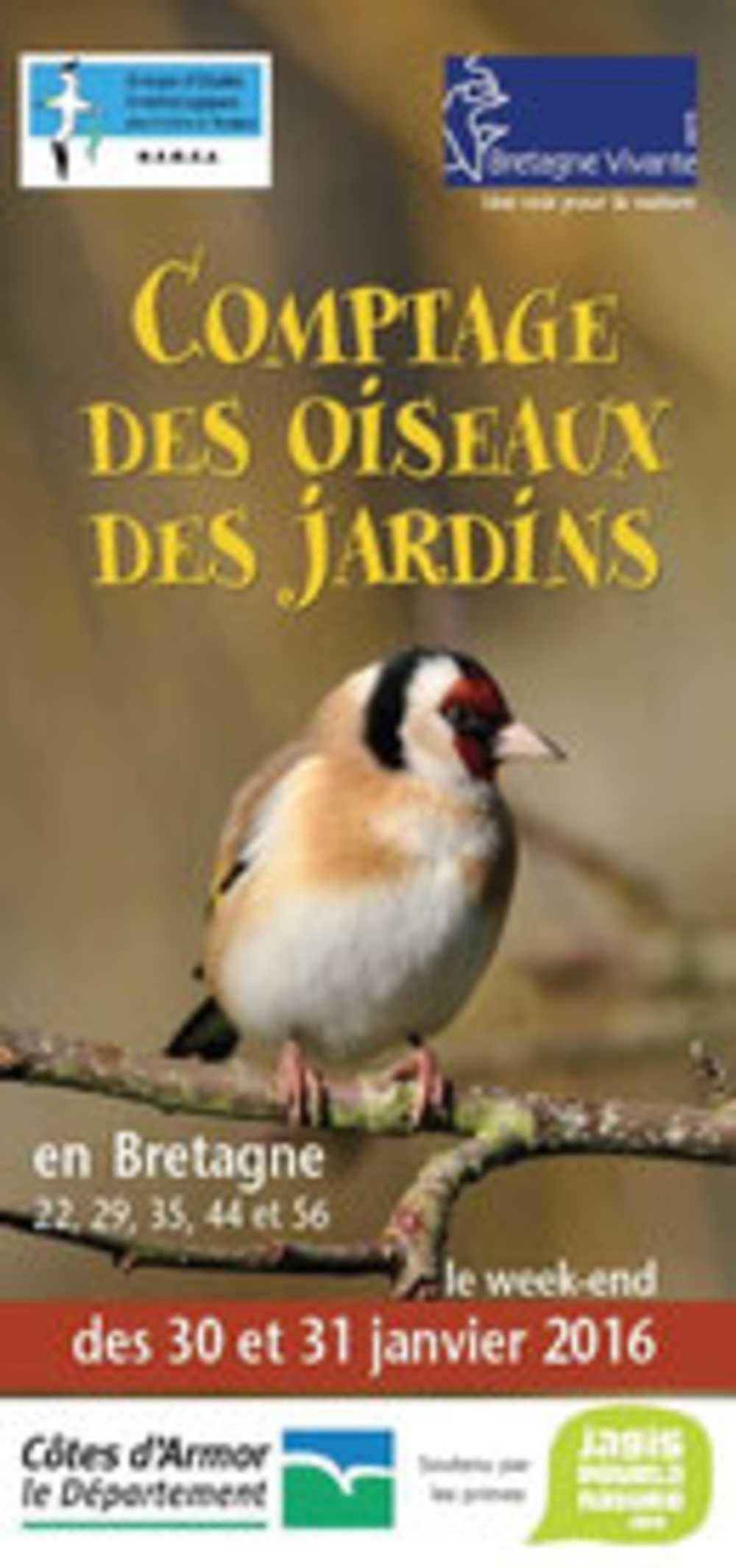 Comptage des oiseaux des jardins les 30 et 31 janvier 0