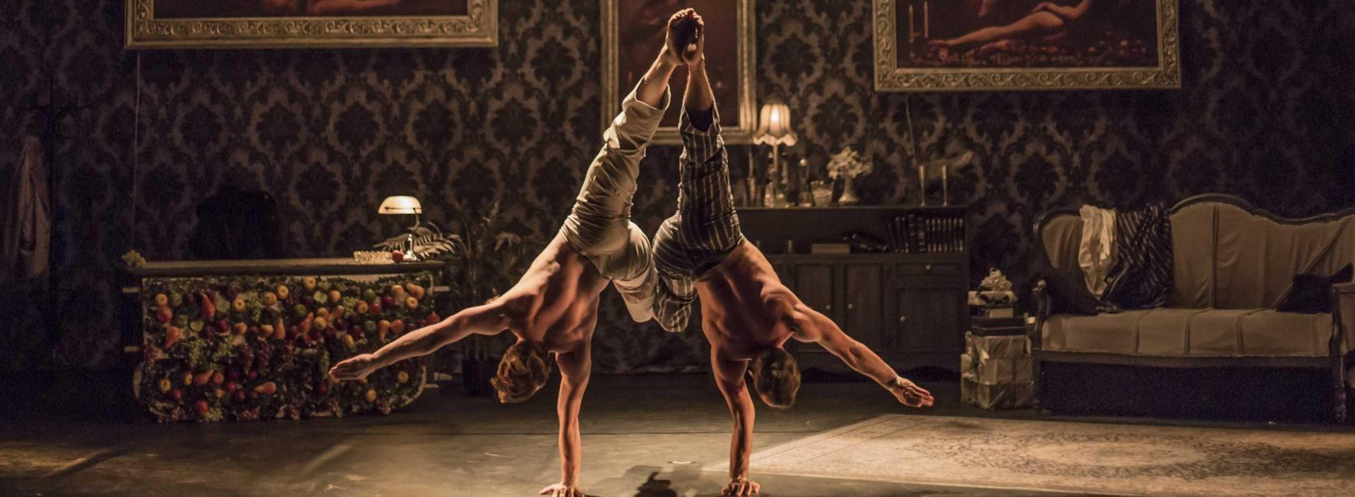 The elephant in the room, un spectacle à découvrir à la Passerelle le 1er février à 20h30 0