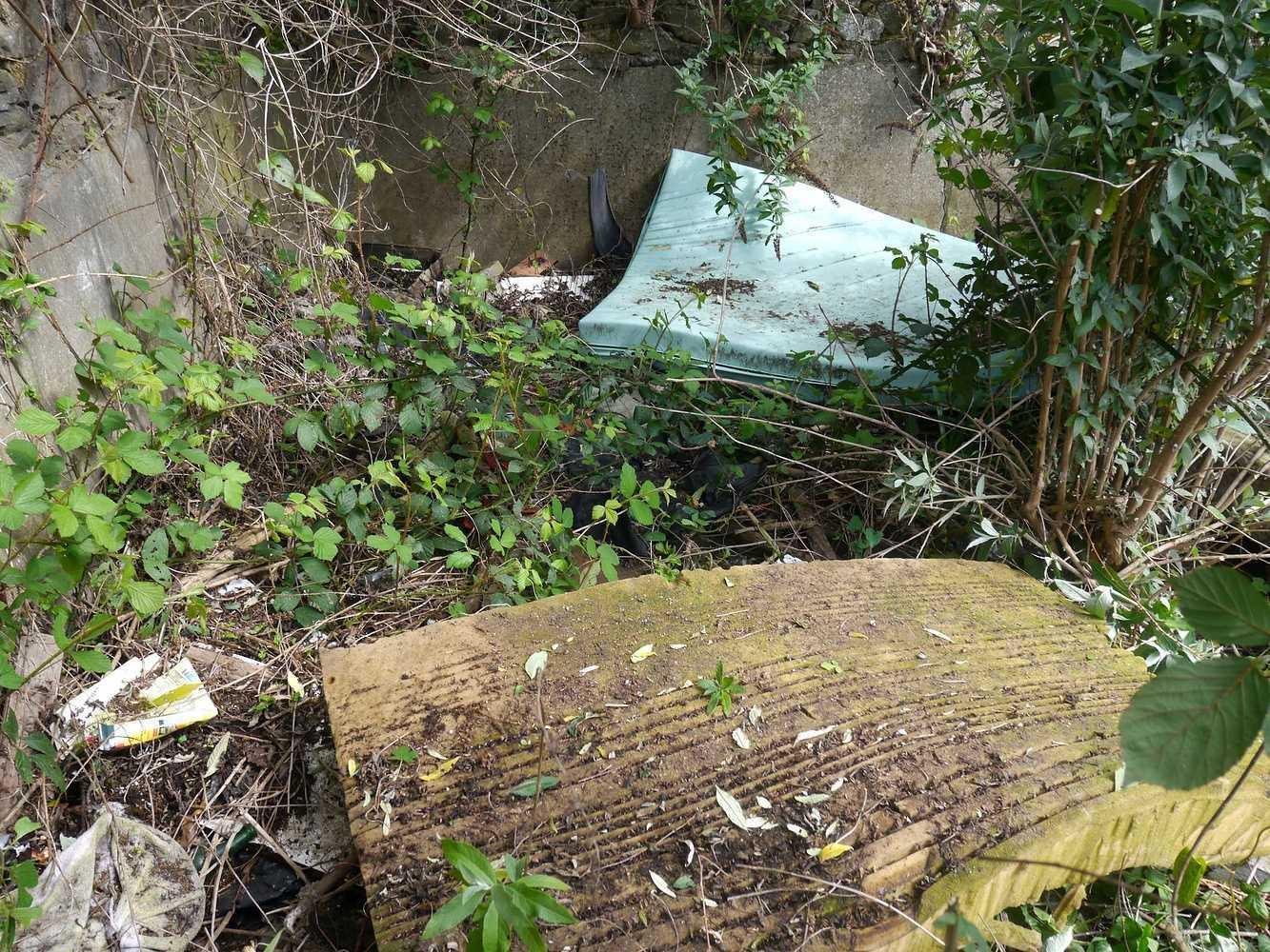 Collecte de déchets dans le quartier p1290027